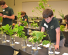 Horticultural Science Summer Institute