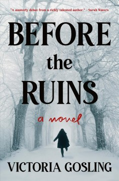 Before the Ruins: A Novel