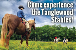 Come experience the Tanglewood stables!