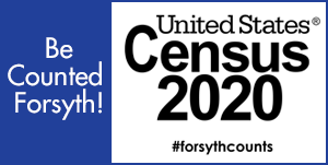 https://2020census.gov/en.html