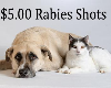 Low-Cost Rabies Vaccination Clinics at FCAC